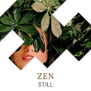 # 1 Album: Zen Still