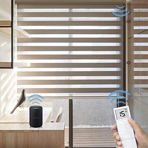 Graywind Motorized Zebra Sheer Blinds Compatible with Alexa Horizontal Light Filtering Window Shades...