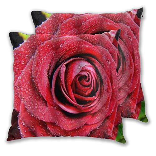 WINCAN Juego de 2 Decorativo Funda de Cojín Flores románticas de rocío de Rosas Floral Funda de Almohada Cuadrado para Sofá Cama Decoración para Hogar,50x50cm