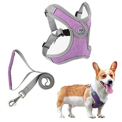 Hundegeschirr für Kleines Mittlere Hunde Anti Zug Geschirr, Atmungsaktiv Hundegeschirr mit Leine, No Pull Reflektierend Verstellbar Sicherheitsgeschirr, S