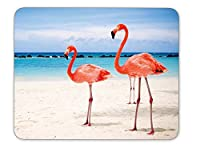 Flamingos Walking on The Beach Mouse pad-Non-Slip Rubber Mousepad-Applies to Games,Home, School,Office Mouse pad [並行輸入品]