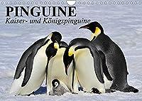 Pinguine - Kaiser- und Koenigspinguine (Wandkalender 2022 DIN A4 quer): Im Sonntagsfrack durch Eis und Schnee (Geburtstagskalender, 14 Seiten )