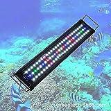 YPSM Luz Led del Acuario,Luz del Acuario Panel,Ajustable Acuario Lámpara,con Soportes Extensibles,Espectro Completo,para Coral Acuario Nano 88cm (35inch) 60w