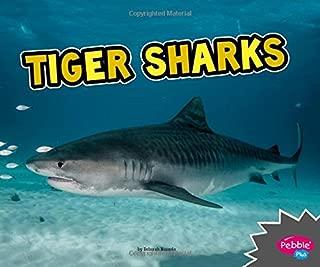 Best index of tiger Reviews
