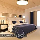 Lámpara de Techo,24W Blanco cálido plafon led de techo, Impermeable IP40-Ultra Delgado Downlight, 3000K LED luz de techo para baño Dormitorio Cocina Sala de estar Comedor Balcón Pasillo 18CM