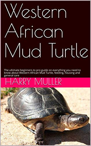 Western African Mud Turtle: The ultimate beginners to pro guide on everything you need to know about Western African Mud Turtle, feeding, housing and general care