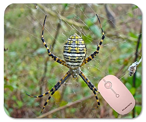 Wdmei Argiope trifasciata Orb Weaver Spider Gaming Mouse Pad Mousepad 8.6 X 7.1 in