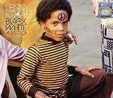 Songtexte von Lenny Kravitz - Black and White America