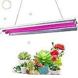 Förderung der Photosynthese von Pflanzen, damit Pflanzen auch ohne Sonnenlicht eine Photosynthese durchführen können, um ein normales Pflanzenwachstum zu erzielen Hochwertiger LED-Chip mit ausreichender Helligkeit und Langlebigkeit. Diese Lampe eigne...
