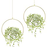 Mkono 2 Pcs Metal Round Hanging Planter Modern Plant Hangers Mid Century Flower Pot Holder Home Decor, Fits 6 Inch Pot, Gold (Pot NOT Included)