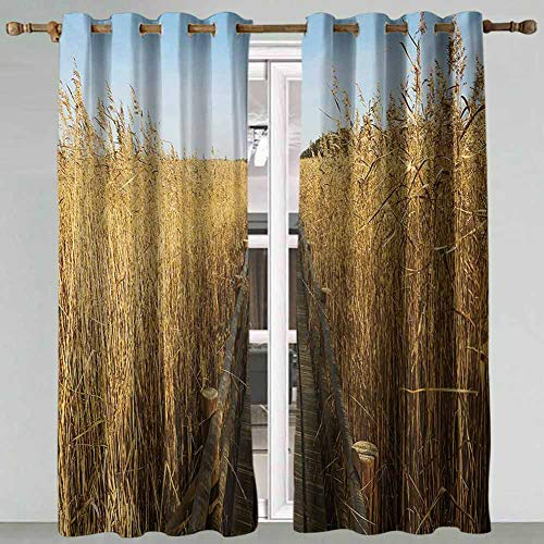SSKJTC Home Curtains Nature Old Narrow Floating Walkway in the Lake Surrounded by Reeds Greenland Nature Theme Yellow Brown Thermal Insulated Blackout Curtains 108x96 Inch
