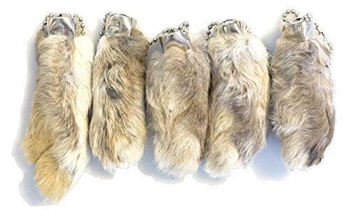 Gefährliche Fäden Kaninchen Kaninchen Fuß Schlüsselanhänger weiß/natur 5PCS