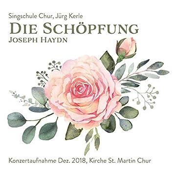 Die Schöpfung (Konzertaufnahme Singschule Chur)