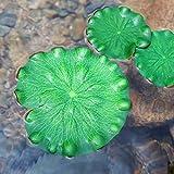 LHZUS Las Plantas artificialmente Hecho Simulación Flotante Lotus Paisaje Hoja Piscina Decorada Acuario Estanque de Peces Decorativos (Color : Verde, Size : One Size)