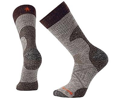 Smartwool PhD Outdoor Light Crew Socks - Men's Hunt Medium Wool Performance Sock Taupe L Unisex
