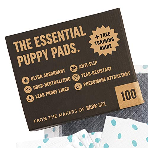 100 Carbon Puppy Pad