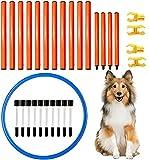Shengruili Perro Set de Agilidad,Entrenamiento de Agilidad para Perros,Obstáculos de Entrenamiento para,Agilidad para Perros,Perro Equipo de Entrenamiento