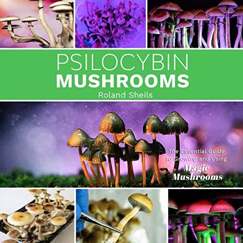 Psilocybin Mushrooms cover art