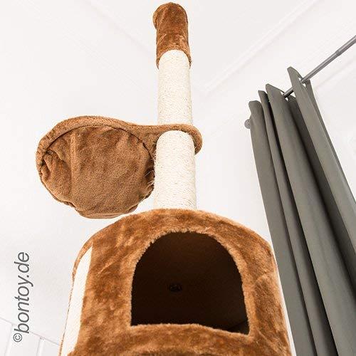 Das 3 Ebene Bontoy Katzenbaum / Höhenverstellbar - 4