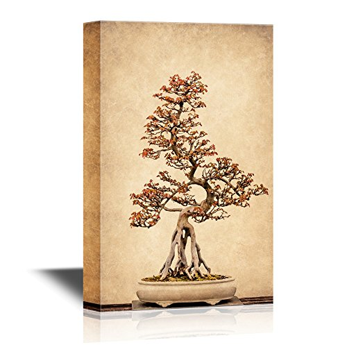 wall26 - Canvas Wall Art - Potted Bonsai Tree - Gallery Wrap Modern Home Art | Ready to Hang - 16x24 inches