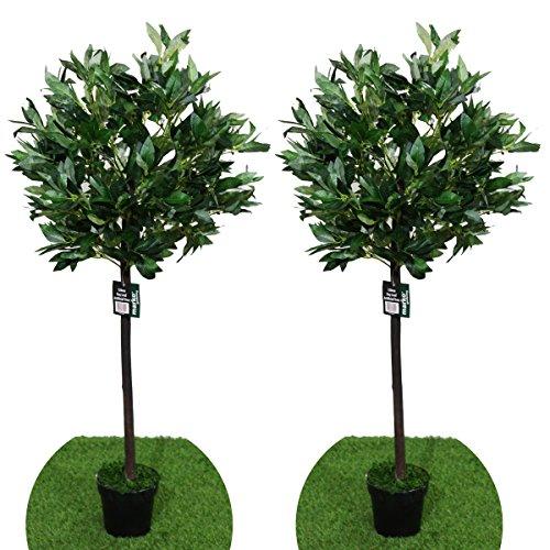 Marko Gardening Pair of 4FT Artificial Bay Leaf Tree Indoor or Outdoor Decorative Replica Plant 120cm