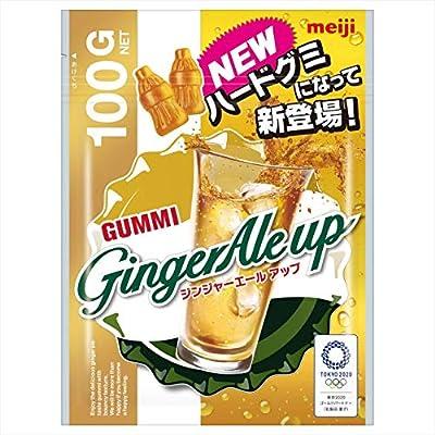 明治 ジンジャーエールアップ 100g ×6袋