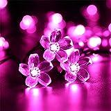 太陽の光のLEDストリング20/50 / 100LEDS妖精ライト屋外ソーラーガーデンパーティーのクリスマスライトの文字列 AWSDC (Color : Pinke Cherry, Size : 7M 50LEDS)