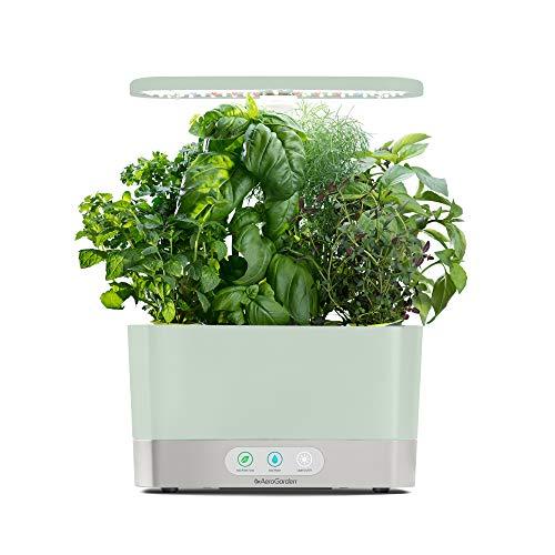 10 | AeroGarden Sage Harvest Indoor Garden