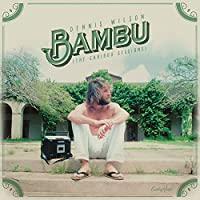 Bambu (The Caribou Sessions)【2017 RECORD STORE DAY 限定盤】 (アナログレコード)