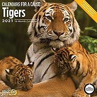 Bright Day Calendars 2021タイガースウォールカレンダーバイブライトデイ、12 x 12インチ、野生動物サファリ