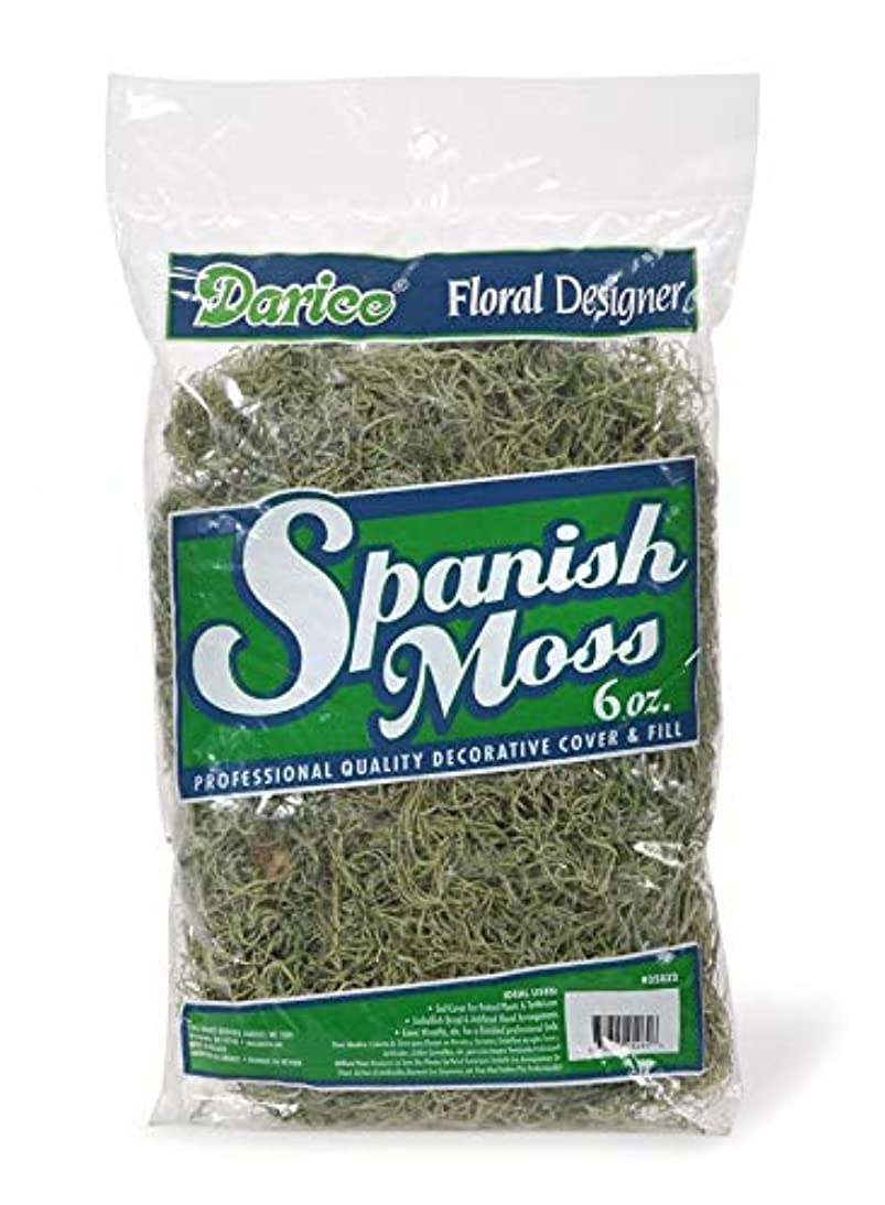 Darice 35832 Floral Spanish Moss Light, Green, 6 oz, Light Green (Pack of 24)