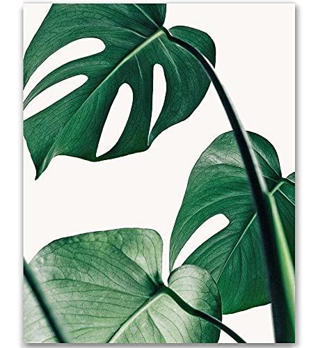 Tropical Leaf Print Botanical Print Palm Print Monstera Art Green Plant Prints Leaf Photography Leaf Print Green Plant Print Tropical Art Print Green Leaves Art Bohemian Art Boho Art 8x10