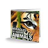 IMPACTO COLECCIONABLES 16 Monedas Originales de Animales, de 16 países Diferentes - Colección...