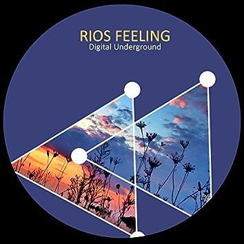 Rios Feeling