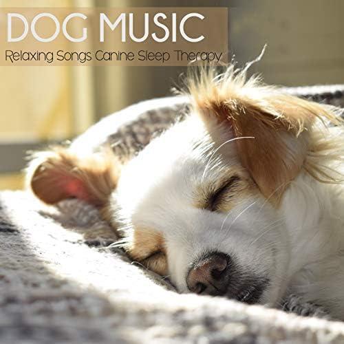 Dog Music Waves, Dog Music Zone & Dog Music Therapy