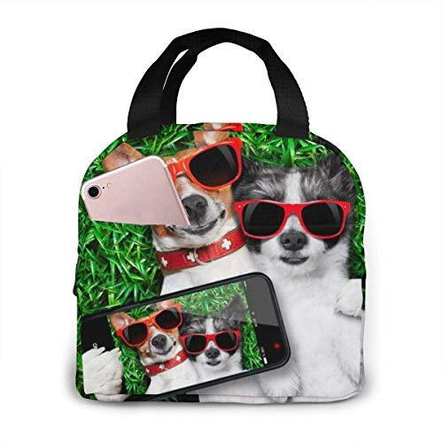 ZYWL Dos perros gafas de sol rojas en verde prado impreso bolsa de almuerzo aislada para mujeres, capacidad, reutilizable, impermeable, bolsa de almuerzo, lonchera para adolescentes, niñas, escuela, v