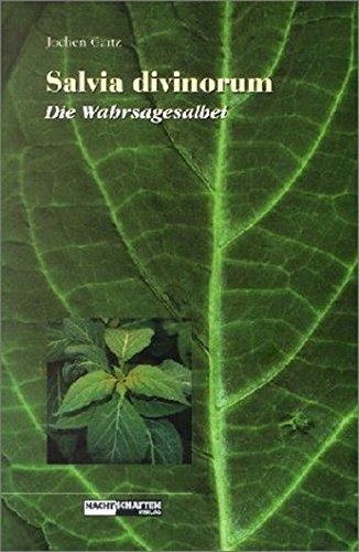 Salvia Divinorum: Die Wahrsagesalbei