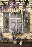 Old Rural House Village Porch Yard Vine Door Spring Baby Photo Background Photography Backdrop Photocall Photo Studio A6 2.1x1.5m