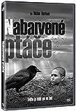 The Painted Bird/Nabarvene ptace 2x DVD 2019 異端の鳥 / ペインテッド・バード