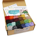 Woolbuddy Needle Felting Wool Roving, Beautiful Felting Wool, Instruction Teach You How to Mix Color- Great for Arts & Crafts & Easy for Beginners (ECO Wool Kit)