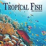 Tropical Fish Calendar 2022: 16 Months Planner (Sept 2021 to Dec 2022)