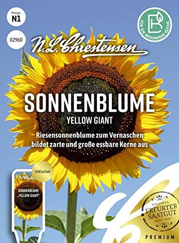 Sonnenblume Yellow Giant, Riesensonnenblume zum Vernaschen, Samen