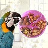 Hypeety Juguete de alimentación para loros de pájaros, juguete...