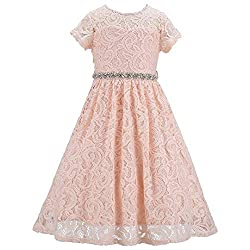 Blush Lace Flower Girl Sequins Short Dress
