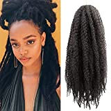 Marley Braid Crochet Hair Afro Twist Springy Long Twisted Up Kinky For Braiding 24 Inch Pack of 2 , colour:1B (24 Inch Pack 2, 1B)…