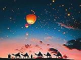 YYFTT Juegos de Pintura por números Pintura por números 40 * 50cm Camello al Atardecer-Combo Box