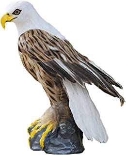 ZILIN Handmade Plastic and Feathered Bald Eagle, Bird Scaring Hawk Decoy, PE Mold +Real Feather 30x20x25 cm