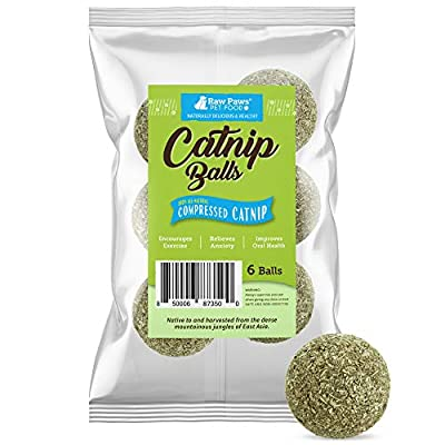 Raw Paws Compressed Catnip Ball Toy, 6-ct - Catnip Toys for Indoor Cats - All Natural Catnip for Cats - Cat Toy Interactive Ball - Cat Kicker Toy Catnip Cat Toys - Cat Nip Kitty Toys - Cat Ball Toy