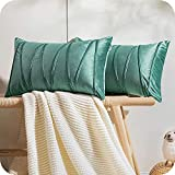 Topfinel 2 Juegos Hogar Cojines Terciopelo Suave Decorativa Almohadas Fundas de Color Sólido para Sala de Estar sofás 30x50cm Verde Claro