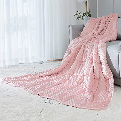 ALANSMA Reversible Weighted Blanket for All Season, Luxury Velvet, Warm and Cool, Adult Kids 15Lb Weighted Blanket, Enjoy Sleeping Anywhere(Pink,15Lb)